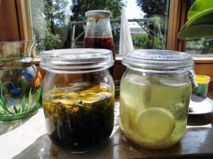 Öl- und alkoholische Ansätze von Johanniskraut, Lavendel-Zitrone als Mückenschutz und Knoblauch-Zitrone für zu hohen Blutdruck