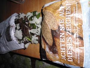 Brombeerblätter fermentieren
