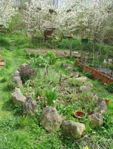 Frühling in Zone 1