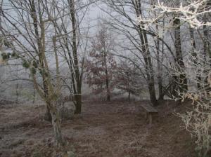 Hinterster Berich, Ruhezone, Wildniszone