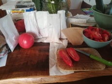 Tomatensaatgut